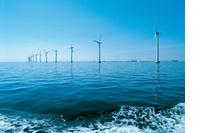 Veelvuldig gedraai aan subsidiekraan slecht voor bevordering duurzame energie image