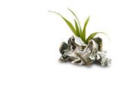 Pleidooi voor een fiscale bonus op aflossen schuld image