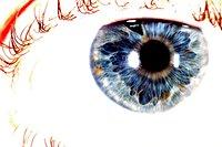 Grote afbeelding van een oog