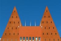 Hoe Den Haag het recht op zorg heeft aangetast image