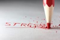 De bestrijding van stress verdient meer politieke aandacht en budget image