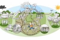 Jongeren gebaat bij gemeentelijke verantwoordelijkheid voor zorg en inkomensondersteuning image